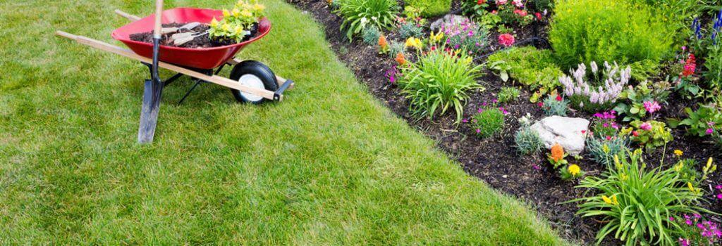Garden cleanups